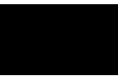 Blue Jungle Gallery